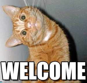 Welcome meme showing orange cat with its head twisted sideways.