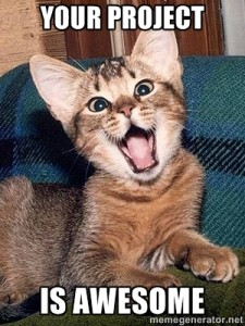 Meme: Kitten proclaiming, Your project is awesome
