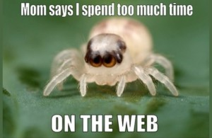 Spider meme: Mom says I spend too much time on the web