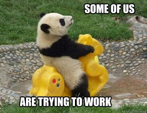 Panda on a rocking horse, with the caption: Some of us are trying to work