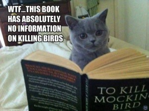 Cat, reading To Kill a Mockingbird says, WTF...this book has absolutely no information on killing birds