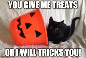 Black cat with pumpkin bucket and the caption You give me treats or I will tricks you